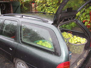 De Mondeo Staat Vol Met Appels, Goed Voor 24 Pakken Van 5 Liter